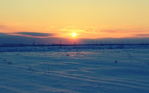 Picture winter, field, the sun, sunset