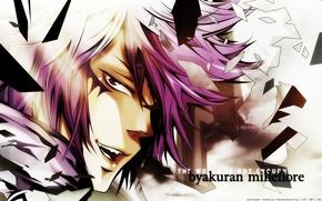 Picture look, fragments, art, katekyo Hitman reborn, pink hair, reborn, amano akira, byakuran millefiore