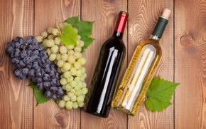 Picture photo, Bottle, Two, Wine, Grapes, Food, Drinks