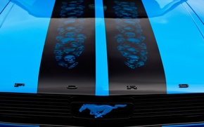 Picture the hood, airbrushing, Ford Mustang, classic, 1966