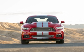 Picture Mustang, Ford, Shelby, 2015