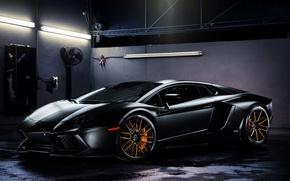 Picture light, lamp, black, lamborghini, black, side view, aventador, lp700-4, Lamborghini, aventador