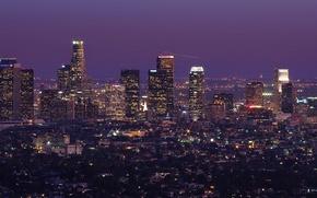 Picture trees, night, skyscrapers, horizon, Los Angeles, Los Angeles, long exposure