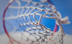 Wallpaper macro, sport, ring