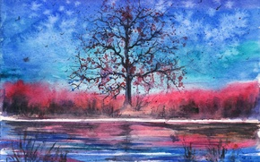 Picture birds, river, tree, the evening, watercolor, painted landscape