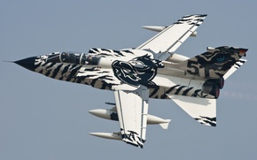 Wallpaper 'Arctic-Tiger', bomber, flight, fighter, Panavia Tornado