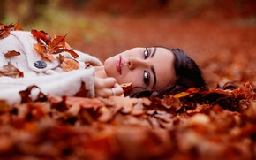 Picture autumn, leaves, portrait, brown-eyed, Helena