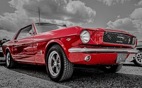 Picture Mustang, Ford, the front, 1966