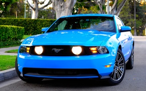 Wallpaper 2010, Mustang, Ford