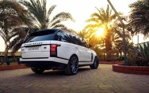 Picture SUV, Range Rover, Range Rover