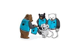 Picture white, art, jacket, Bears, company, grizzly, brown, Koala