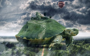 Picture house, balloon, rain, turtle, art, ladder, giant