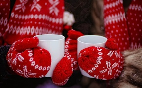 Picture winter, red, tea, hands, Cup, gloves