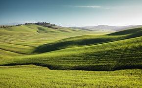 Picture summer, grass, landscape, nature, space