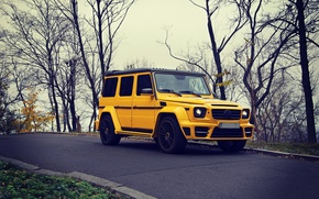 Picture Yellow, Autumn, Mercedes, Mercedes Benz, brabus, SUV, G63
