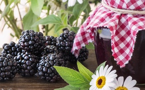 Picture BlackBerry, blackberries, Bank, chamomile flowers, chamomile flowers, Bank, berries, berries, jam, jam