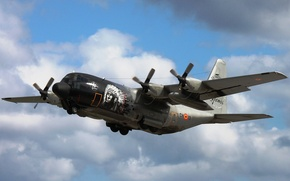 Picture flight, the plane, military transport, C-130, (CH-13)