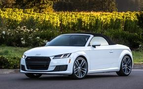 Wallpaper Audi, Audi, Roadster, Roadster, quattro, TFSI, US-spec, 2015