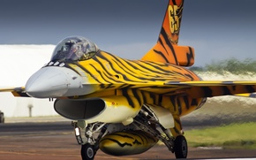 Picture weapons, the plane, Belgium Air force, FA-77