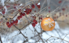 Picture winter, berries, Bush, new year, Christmas, ball, decoration