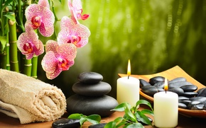 Wallpaper candles, bamboo, black, towel, flower, massage, spa, Orchid, Spa, stones