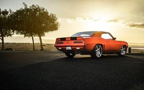 Picture Chevrolet, Muscle, Camaro, Orange, Car, Sunset, American, Z28, Rear