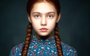 Picture portrait, girl, braids, Alexander Vinogradov