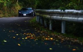 Picture road, autumn, forest, Lamborghini Hurricane
