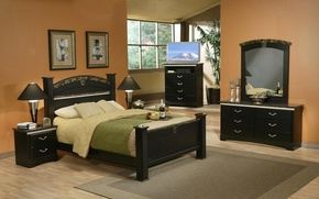Picture bed, room, mirror, TV, window, the hotel, chest, bedroom