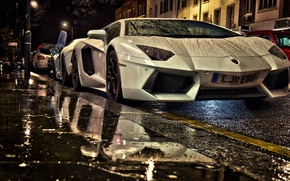 Picture Street, White Aventador, Lamborghini Aventador under rain at night, Aventador in Street, Two Lamborghini, Aventaror, …