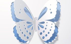 Picture rendering, background, butterfly, wings, shadow