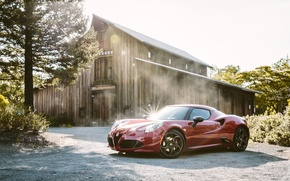 Picture forest, the barn, Alfa Romeo, Launch Edition, 2015