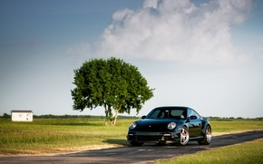 Wallpaper tree, black, front, black, Porsche, 911, 997, the sky, Porsche, Turbo