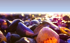 Picture light, beach, sea, mood, color, shore, shells