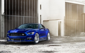 Picture car, Ford Mustang, blue, William Stern
