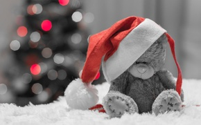 Picture holiday, hat, toy, tree, bear, bokeh