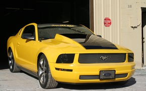 Picture Mustang, Ford, Tampa, Jax, Wax
