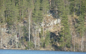 Picture forest, lake, Karelia