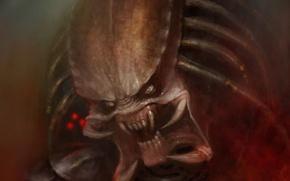 Wallpaper figure, monster, predator, alien