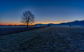 Picture frost, field, autumn, the sky, mountains, tree, morning