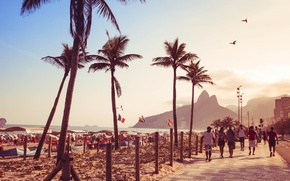 Picture beach, palm trees, people