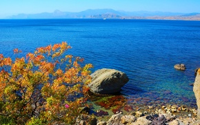 Picture water, mountains, branches, stones, shore, coast, the bushes, Crimea, The black sea