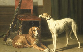 Picture dog, picture, Conradyn Cunaeus, Companions of the Hunt