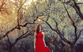 Picture girl, style, background, dress, in red