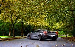 Picture Ferrari, Green, Autumn, Tuning, asphalt, Silver, 430, Wheels, Trees, Leaf