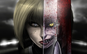 Picture Claymore, anime, Claymore, Clare, half-Yoma