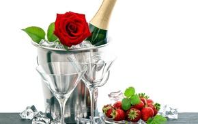 Picture romance, rose, glasses, strawberry, champagne