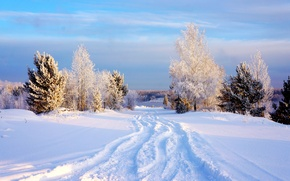 Picture winter, the sky, snow, trees, Sky, Winter, Snow, Trees