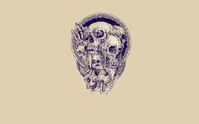 Picture background, skull, bones, artist Rafal Wechterowicz