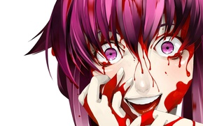 Picture fear, horror, madness, blood, Mirai nikki, Future diary, Gasai Yuno, blood on his hands